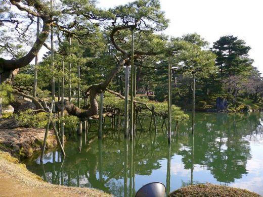 Bassin aquatique du jardin japonais de kenrokuen for Jardin kenrokuen en kanazawa