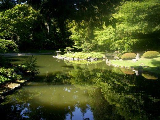Bassin du jardin nitobe garden universit de la colombie for Bassin jardin japonais