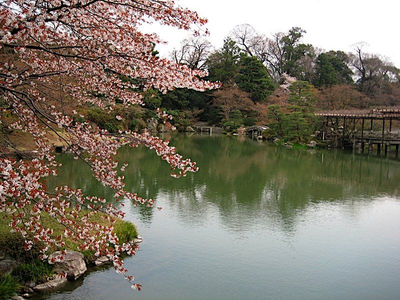 Jardin japonais org collection photo pour la creation de jardin japonais - Les plus beaux jardins du monde ...